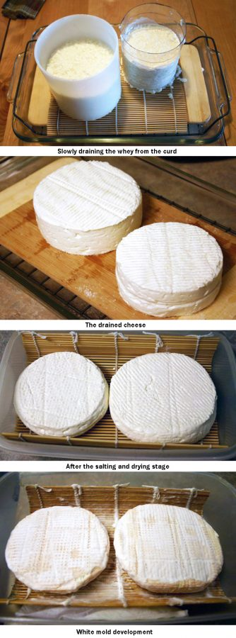 camembert making