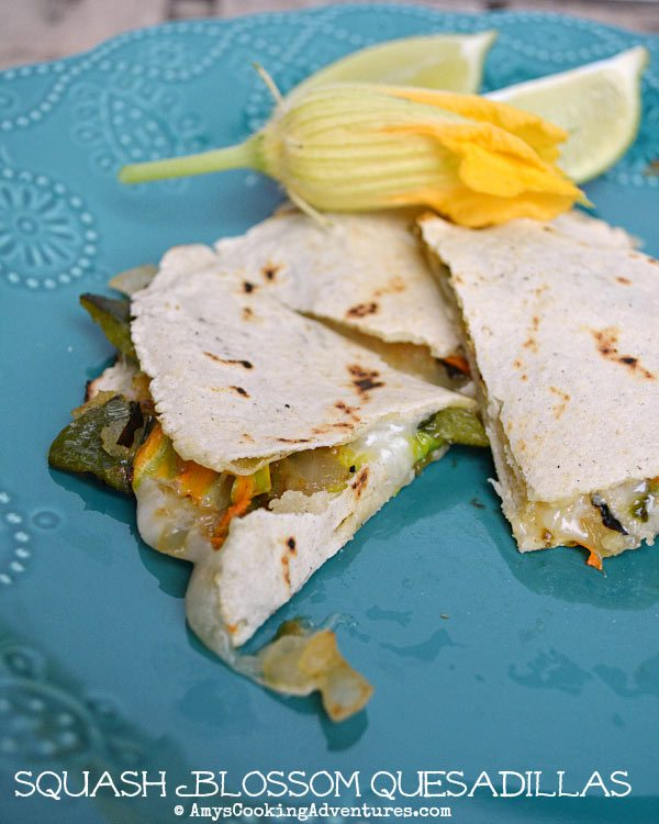 and the second with a lovely Squash Blossom Quesadillas
