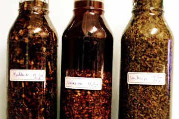 steeping herbal tinctures