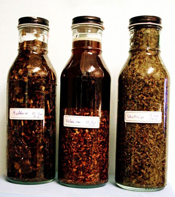 Homemade Herbal Tinctures & 2 kitchen reference books