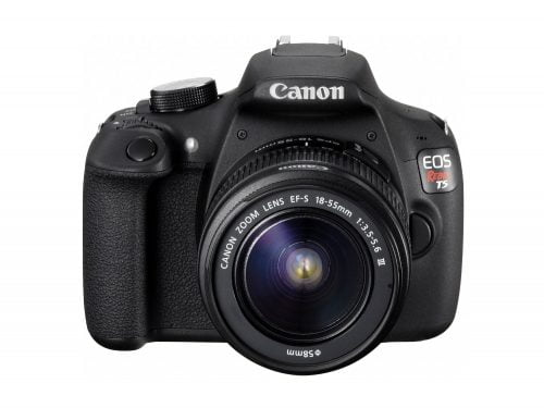 Food Photography Gift Guide Canon EOS Rebel T5
