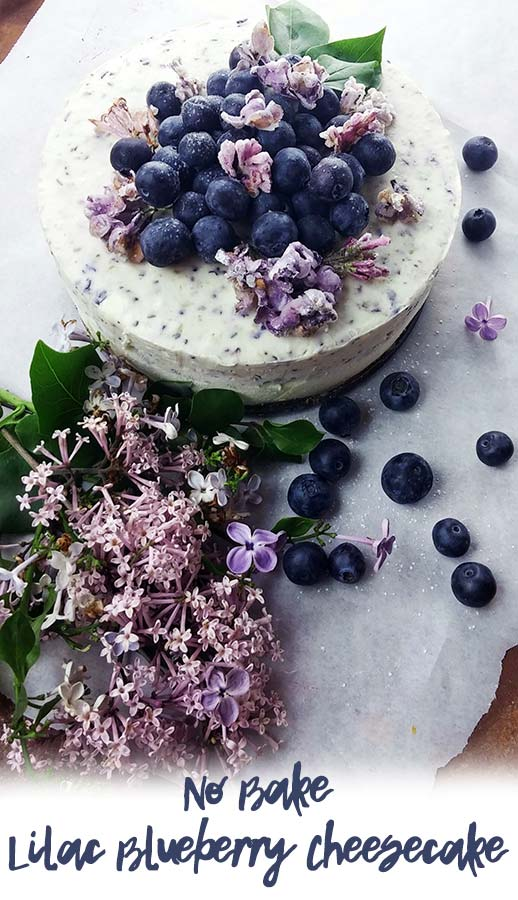 Lilac Blueberry Cheesecake PIN