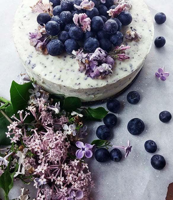 No Bake Lilac Blueberry Cheesecake OMG 10th Blogiversary