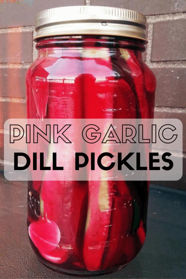 Pink Garlic Dill Pickles