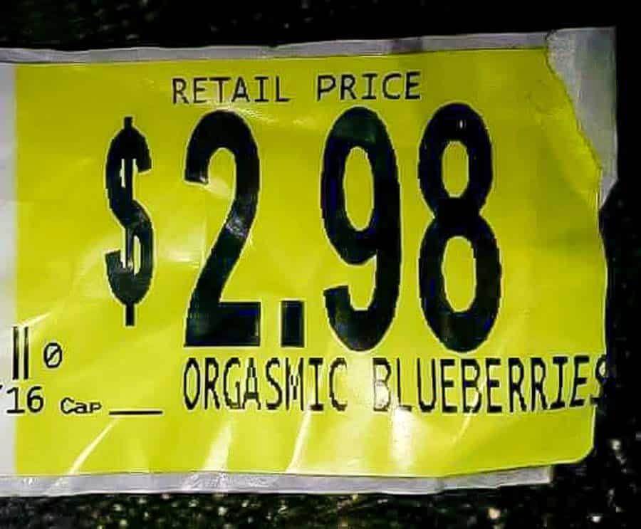 orgasmic blueberry.jpg