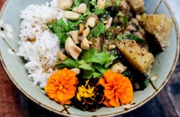 Thai Sweet Potato Curry Cricket Recipe