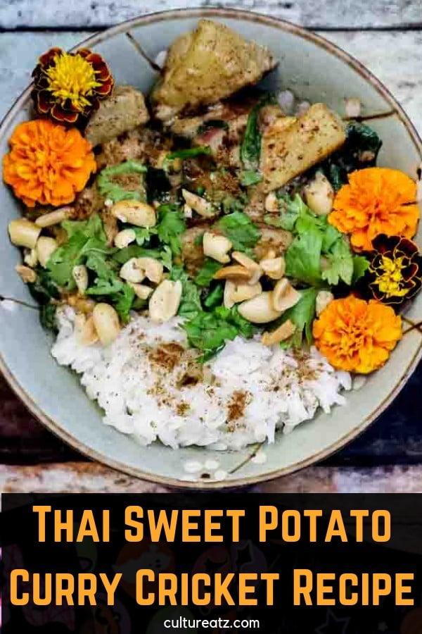 Thai Sweet Potato Curry Cricket Recipe