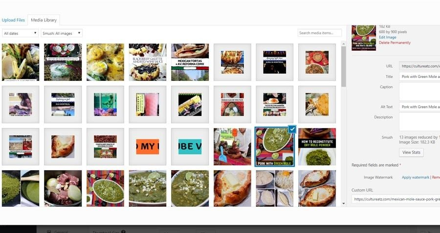 wordpress plugin foogallery media