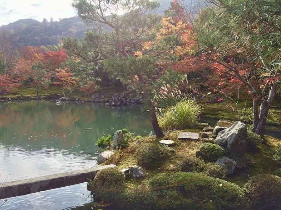 Kyoto Arashiyama Fall